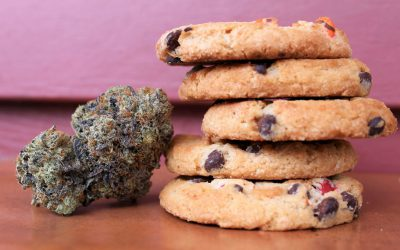 Smoking vs. Edibles – Which Marijuana Medication is the Best for You?