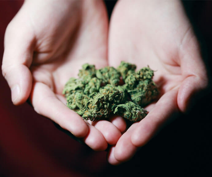 7 of the best strains for MS