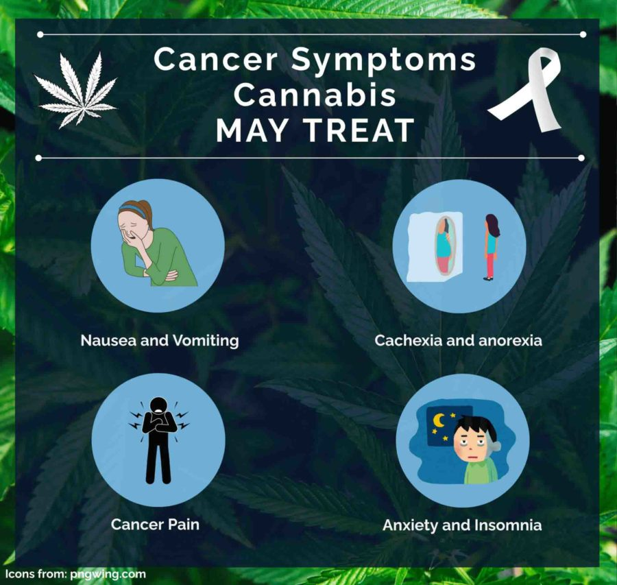 How marijuana helps with cancer